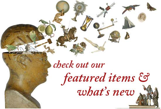 Check out our featured items and what's new